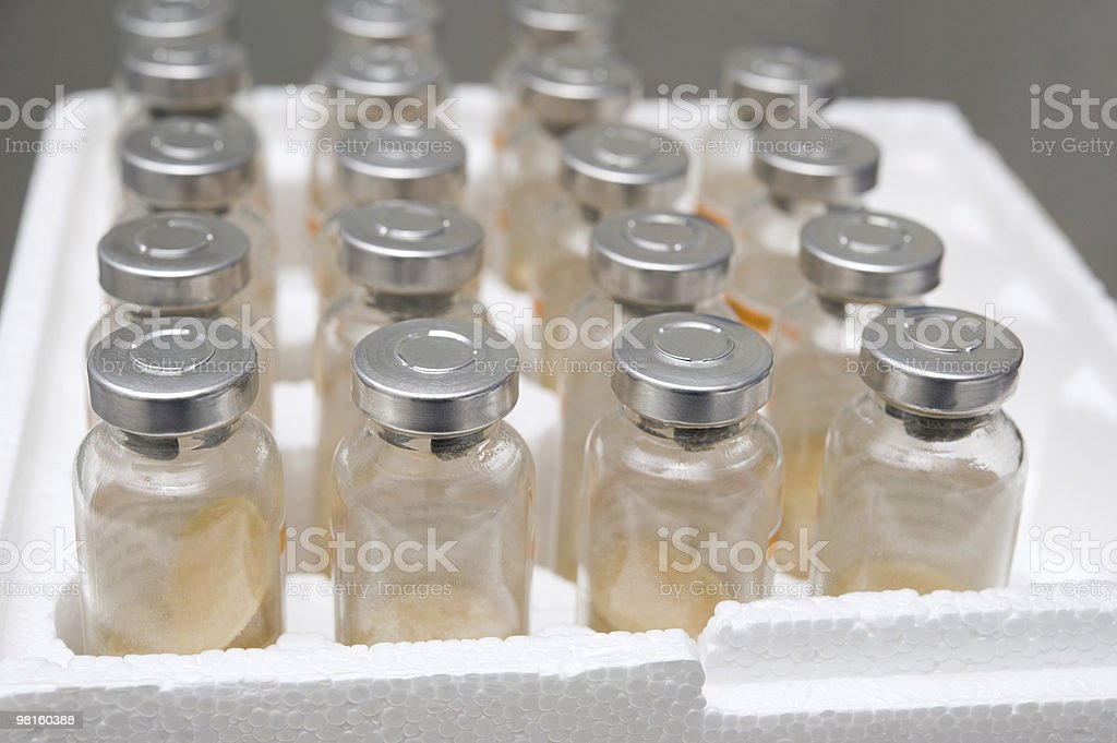 Vaccine vials royalty-free stock photo