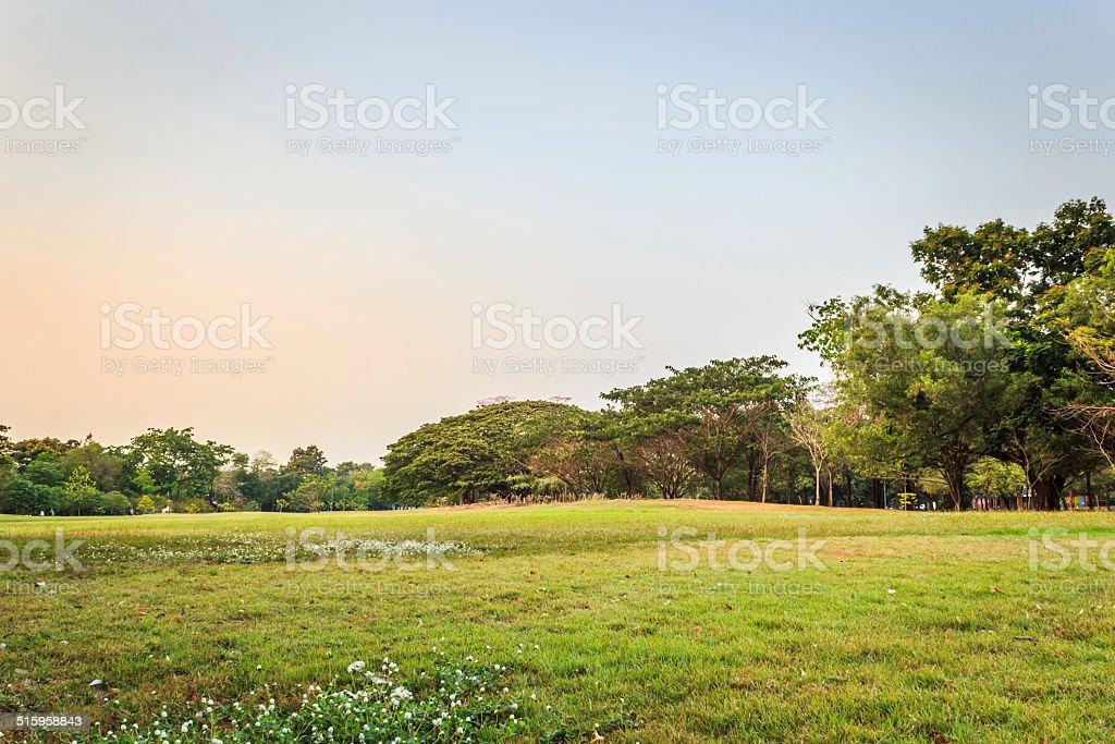 Vachirabenjatas Park (Rot Fai Park) stock photo