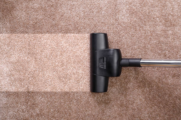Vacuuming carpet with vacuum cleaner. Housework. Vacuuming carpet with vacuum cleaner. Housework service. Close up of the head of a sweeper cleaning device. suction tube stock pictures, royalty-free photos & images