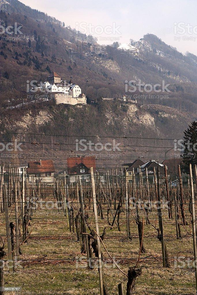Vaduz castle and vineyard royalty-free stock photo