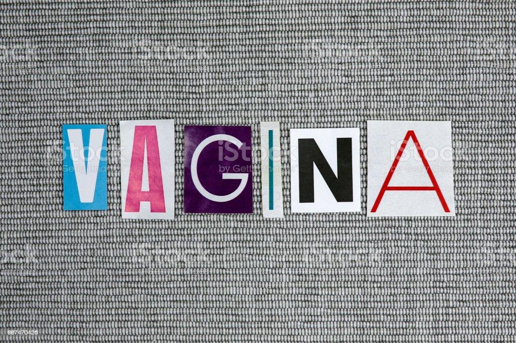 vagina word on gray background stock photo