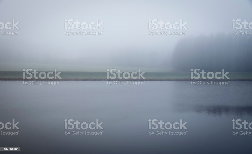 Vague misty and mysterious landscape with channel and river bank foto