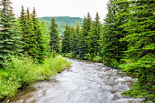Vail resort town in Colorado with long exposure of Gore creek river and pine trees
