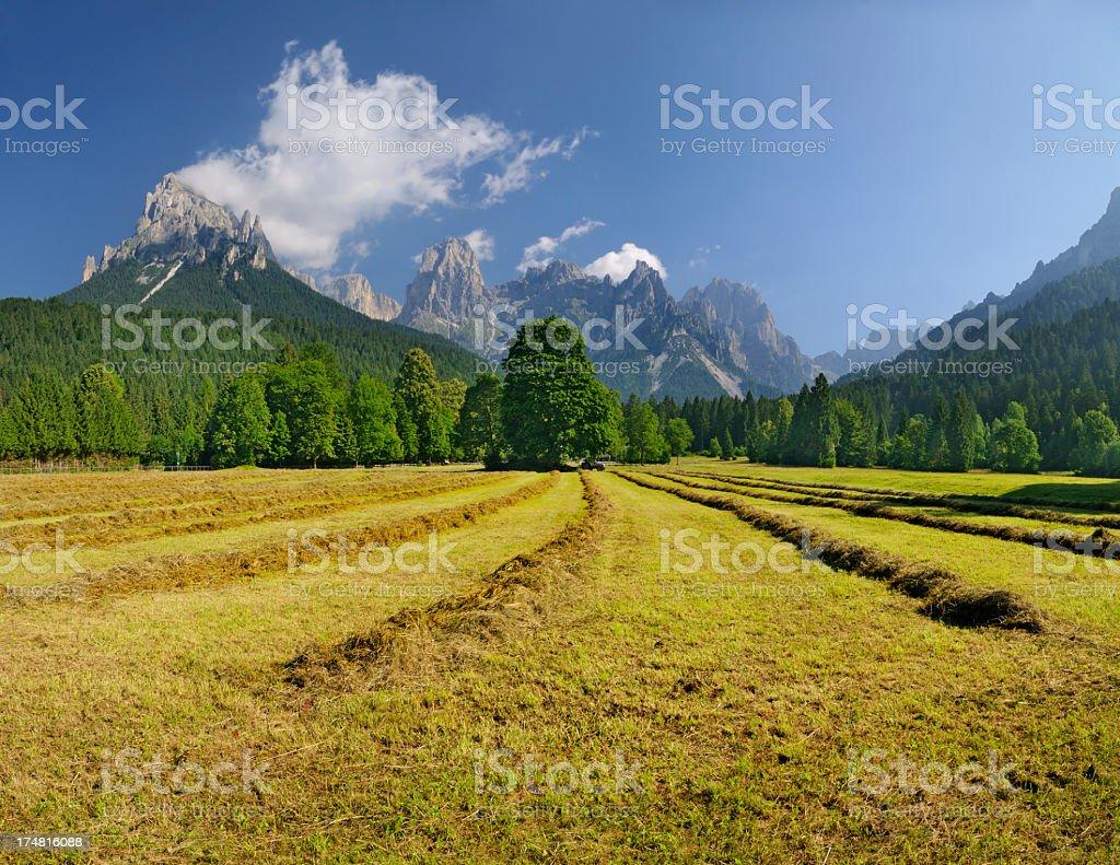 Val Canali (Dolomiti - Italia) stock photo