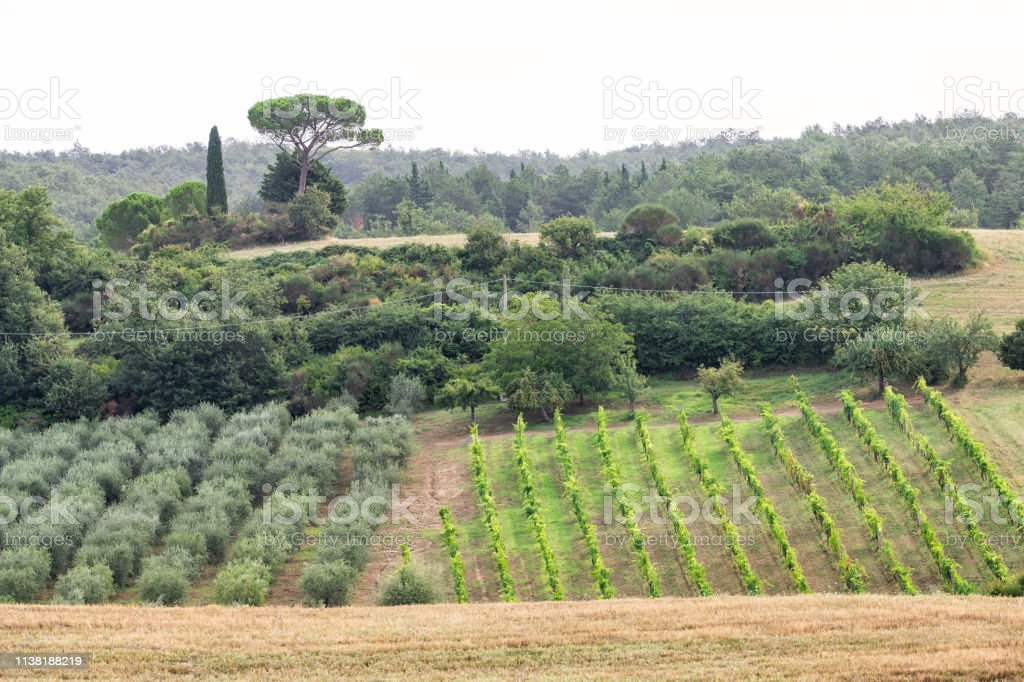 Val Dorcia Countryside In Tuscany Italy With Farm Landscape