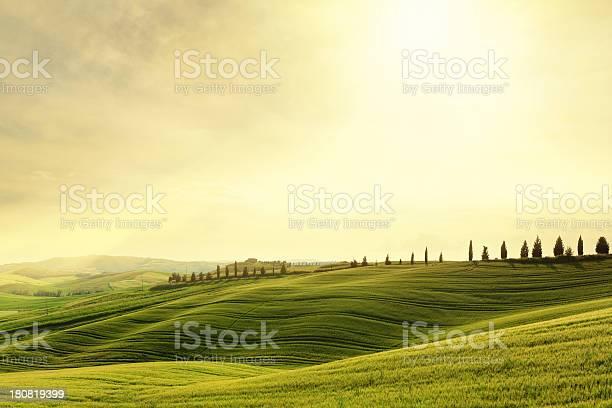 Val dorcia hillside sunset in tuscany italy picture id180819399?b=1&k=6&m=180819399&s=612x612&h=ma3cyf3poooxqdkv0lh7bpdmfbn56ugttc oap6yhe8=
