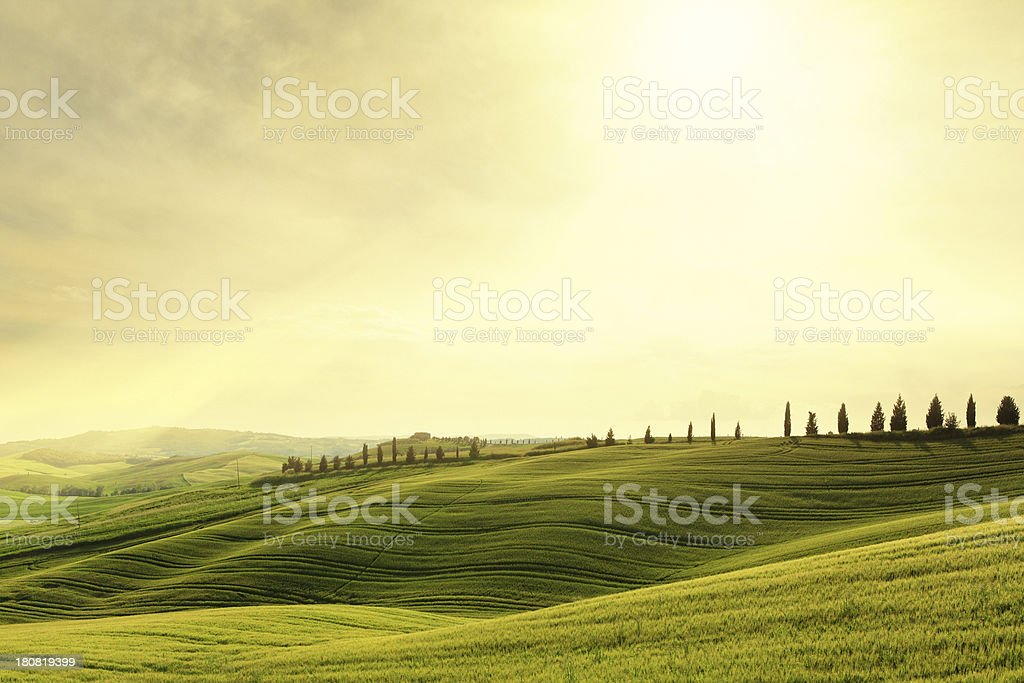 Val d'Orcia hillside sunset in Tuscany, Italy stock photo