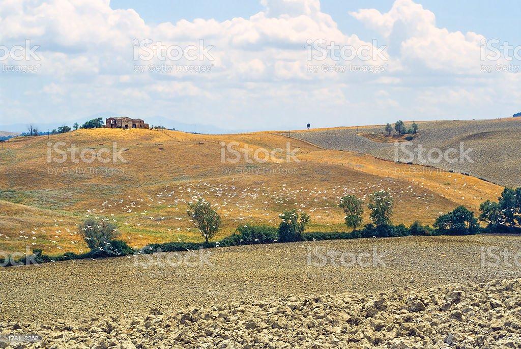 Val d'Orcia (Tuscany) stock photo
