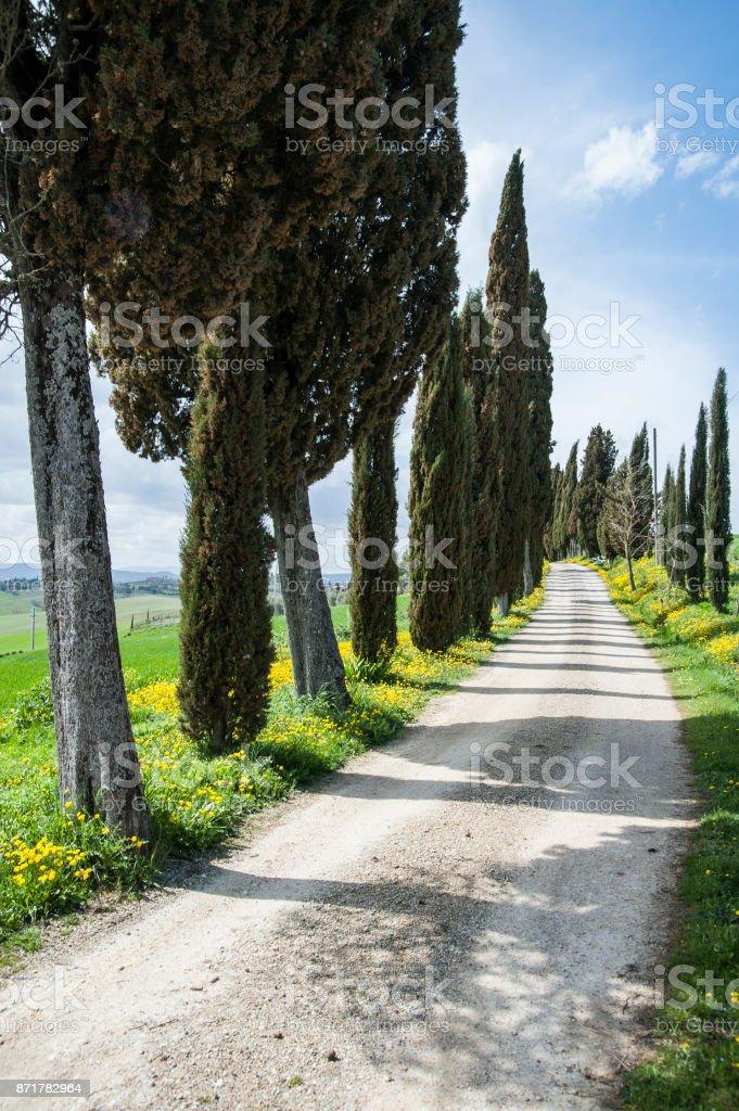 Val d'Orcia - Siena, Italy stock photo