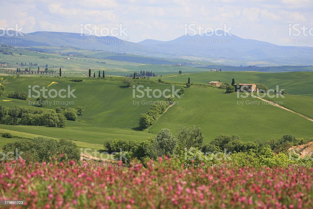 Val d'Orcia spring scene, Tuscany Italy royalty-free stock photo
