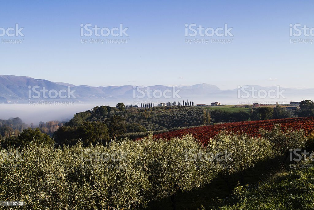Val D'Orcia Tuscany Hills royalty-free stock photo