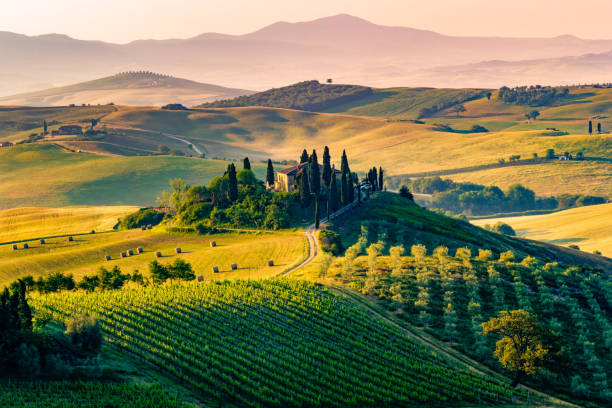 Val d'Orcia, Tuscany, Italy Val d'Orcia, Tuscany, Italy. A lonely farmhouse with cypress and olive trees, rolling hills. pienza stock pictures, royalty-free photos & images