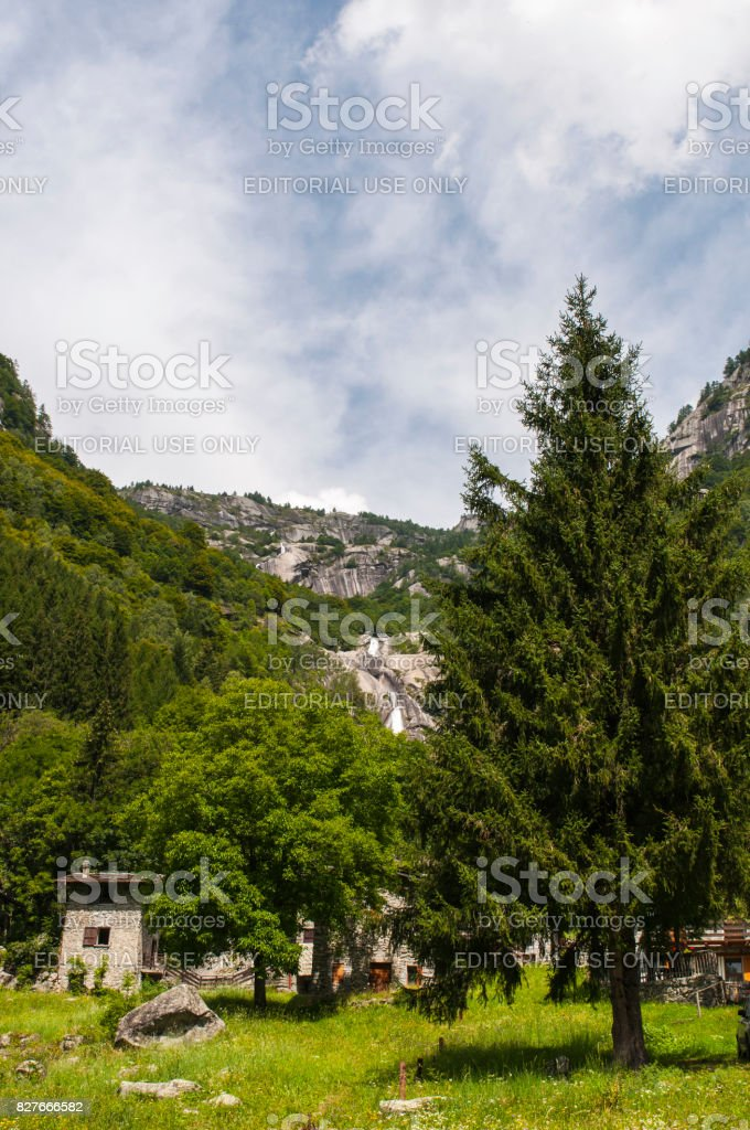 Val Masino: view of a mountain retreat and a giant fir in the Mello Valley, Val di Mello, a green valley surrounded by granite mountains and forest trees stock photo