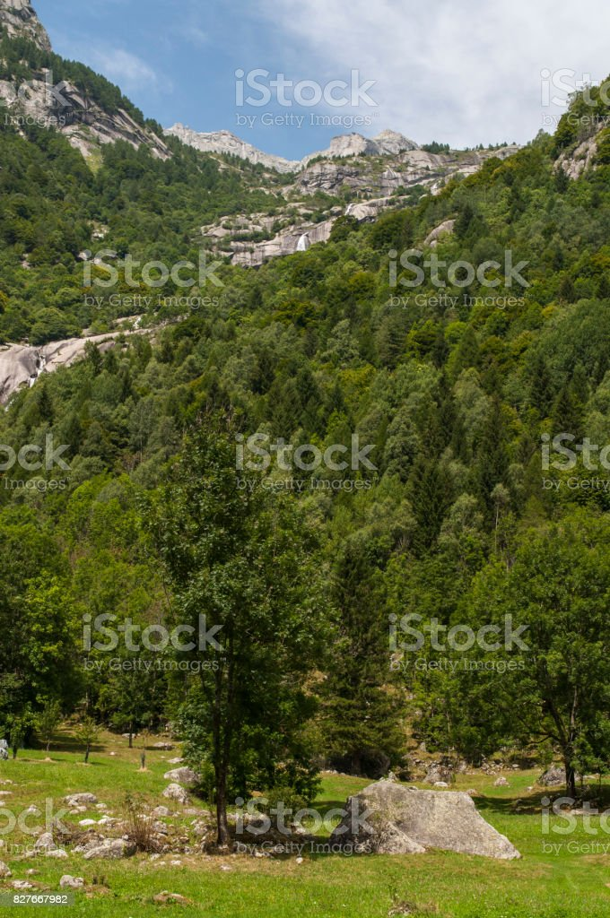 Val Masino: view of the mountain peaks of the Mello Valley, Val di Mello, a green valley surrounded by granite mountains and forest trees, stock photo