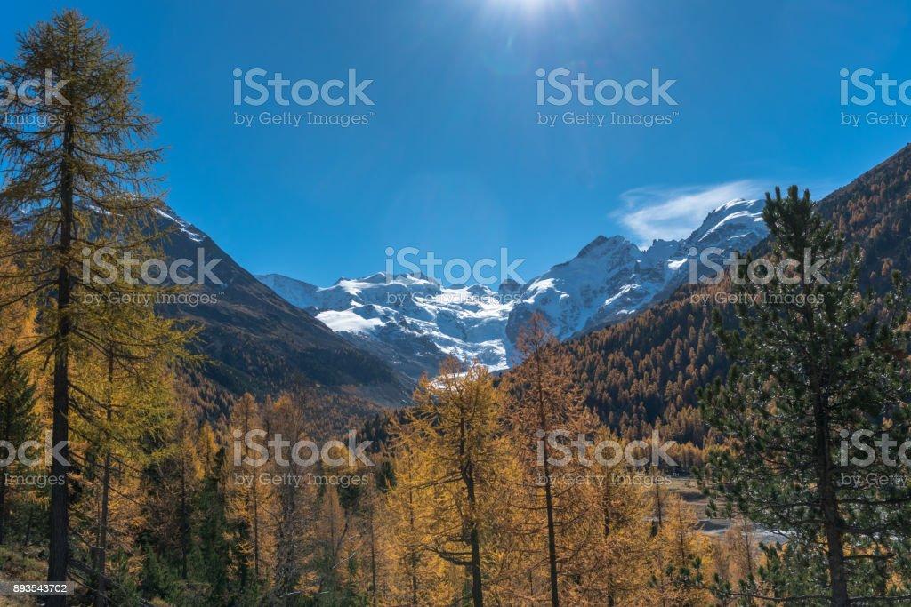 Val Morteratsch near St. Moritz in Switzerland stock photo
