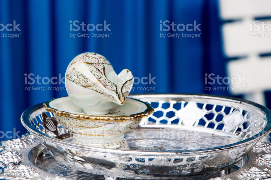 Valambari shank or Great indian chank, a representative of the prosperity and fortune, according to the Hindu mantra, is used in the blessed water in wedding ceremony and celebration in Thailand. stock photo