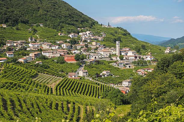 valdobbiadene town and prosecco vineyards in veneto - venezien stock-fotos und bilder