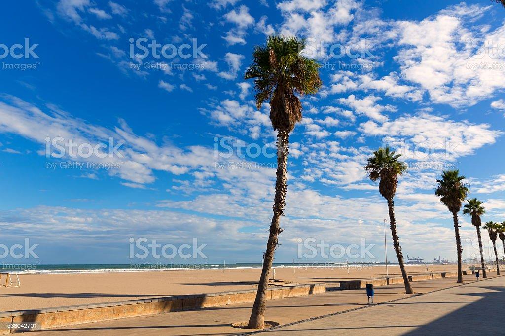 Valencia malvarrosa las arenas de la playa de palmeras en for Spiaggia malvarrosa valencia