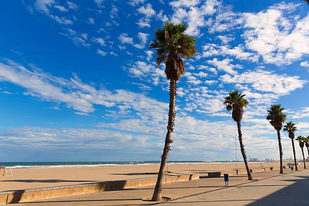 Valencia Malvarrosa Las Arenas beach palm trees in Patacona stock photo