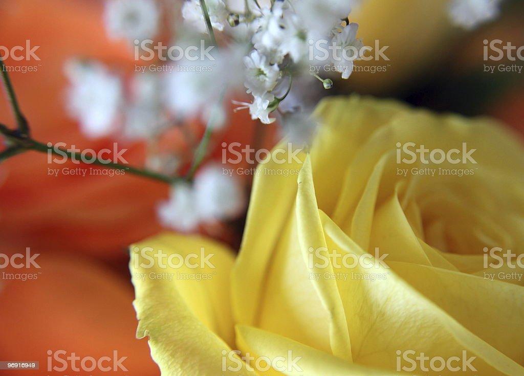 Valentine Bouquet royalty-free stock photo