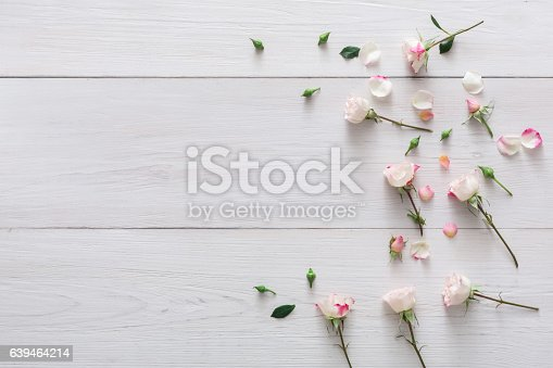 Valentine background with scattered pink rose flowers and petals with copy space on white rustic wood. Happy lovers day mockup