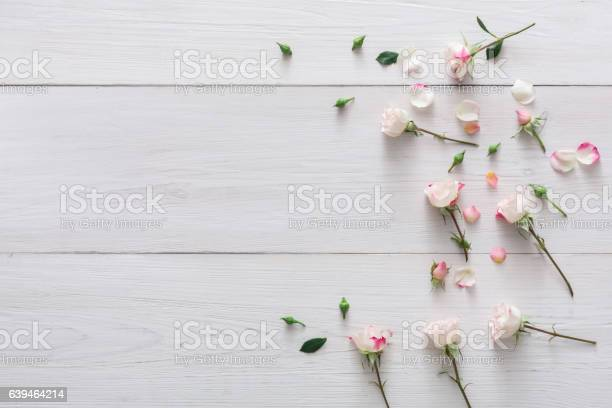 Valentine day background petals and flowers on white wood picture id639464214?b=1&k=6&m=639464214&s=612x612&h=xmhbshaejyqnjgx3jvrv8qjkcozsgtbamcifbnyzuhk=