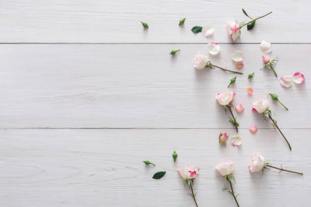 valentine day background, petals and flowers on white wood - holzblumen stock-fotos und bilder