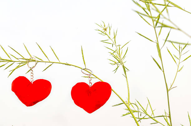 Valentine love symbol hanging on a tree stock photo