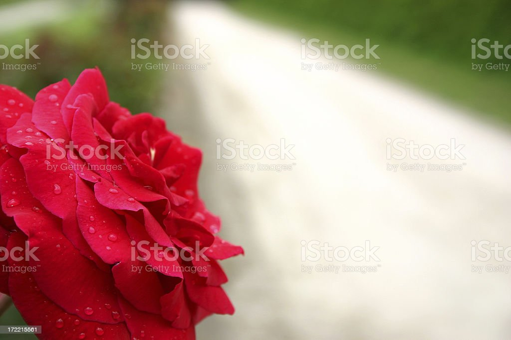 valentine road royalty-free stock photo