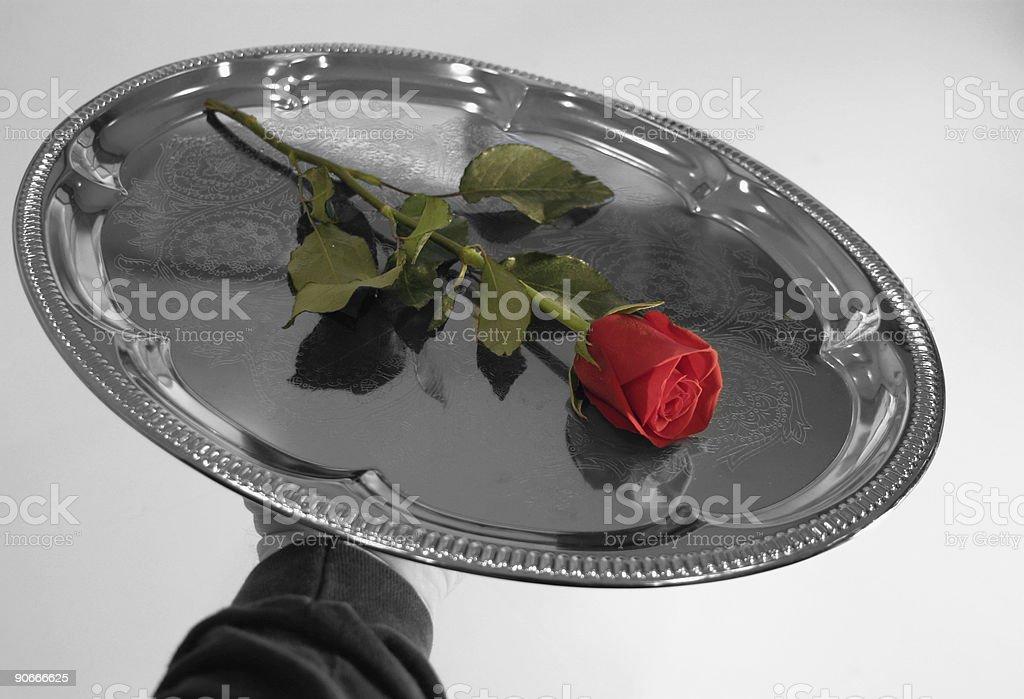 Valentine Rose 2 royalty-free stock photo