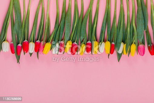 Valentine's day concept. Valentine's Day tulips. Holiday greeting card for Valentine's Day, Woman's Day, Mother's Day.