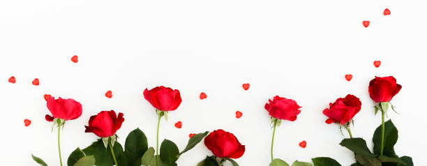 Valentines day background frame of a beautiful red roses and red on picture id1033906164?b=1&k=6&m=1033906164&s=612x612&w=0&h=17y1a2ba8r3pjh6bulodfqvxksxmppk7t7lol4nxbvu=
