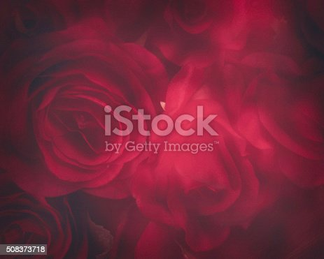 Valentine's Day background of soft blurry red roses
