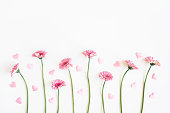 istock Valentine's Day background. Pink flowers, hearts on white background. Valentines day concept. Flat lay, top view, copy space 1300292677