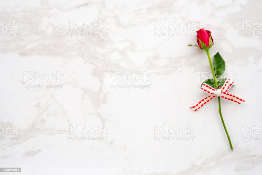 Valentines Day Background Template Red Rose Love Symbol On White
