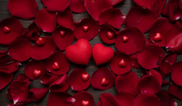 Valentines day background with hearts and rose petals picture id1295616483?b=1&k=6&m=1295616483&s=612x612&w=0&h=vahtqebkvflr88teic8lww0aojzx5avgv2vdkjcjfwa=