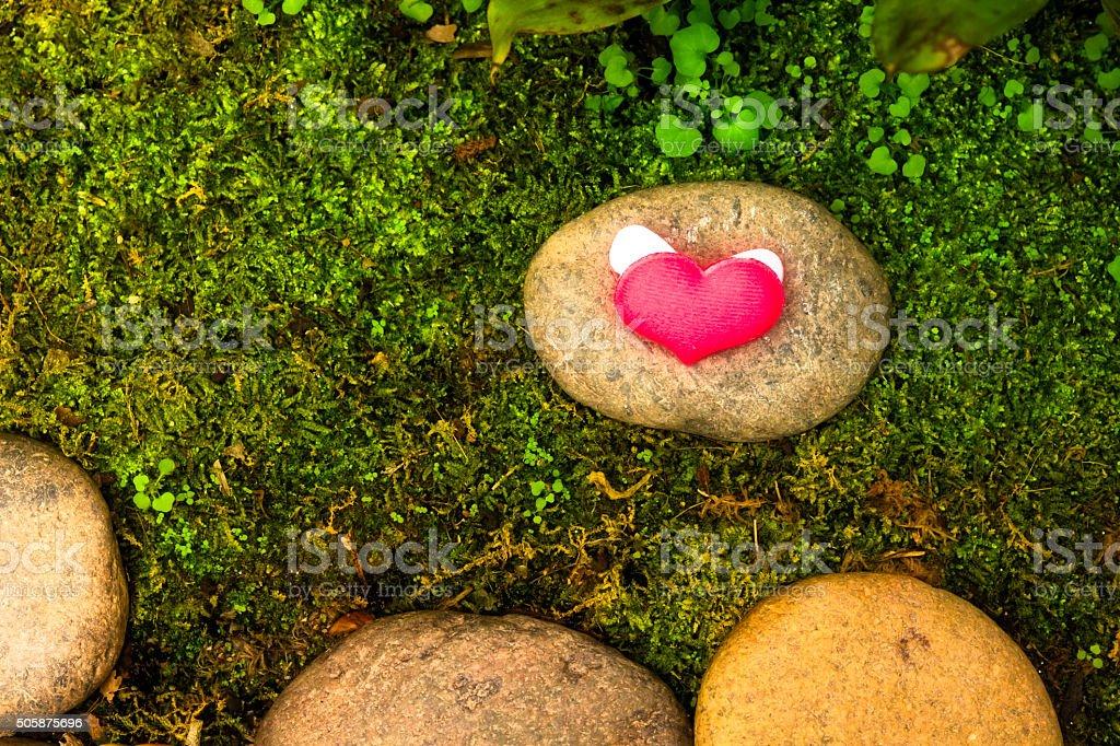 Valentinstag Hintergrund mit Herz – Foto