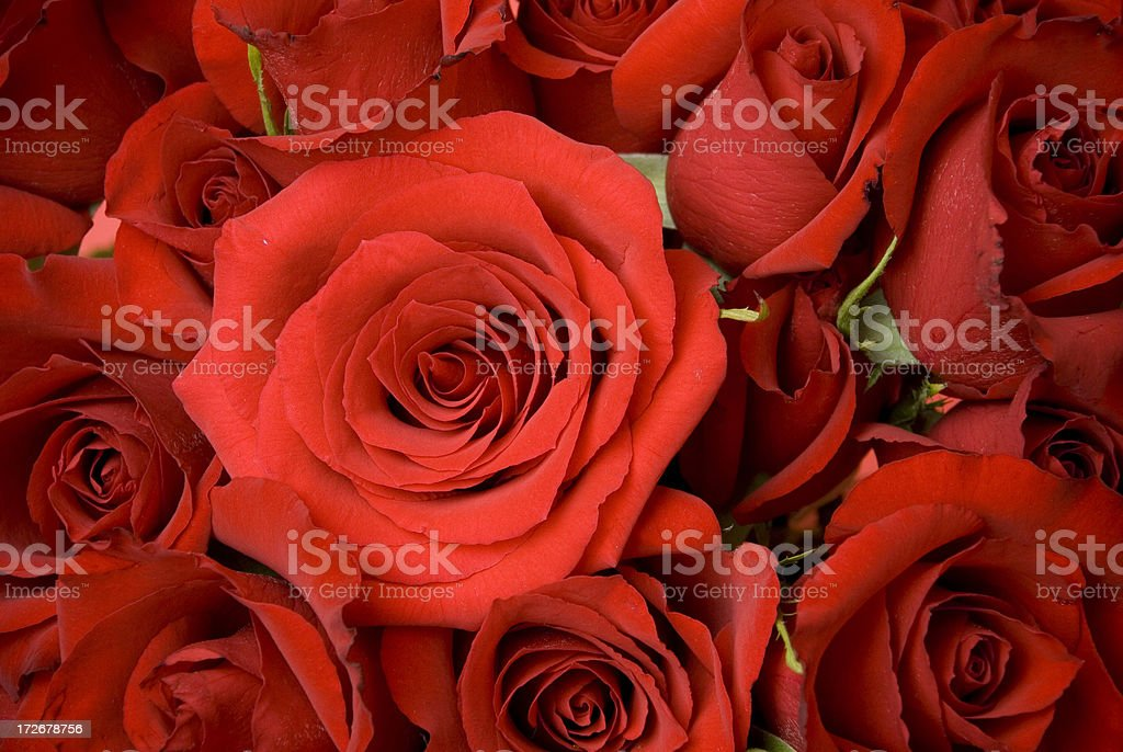 Valentines Day Bouquet royalty-free stock photo