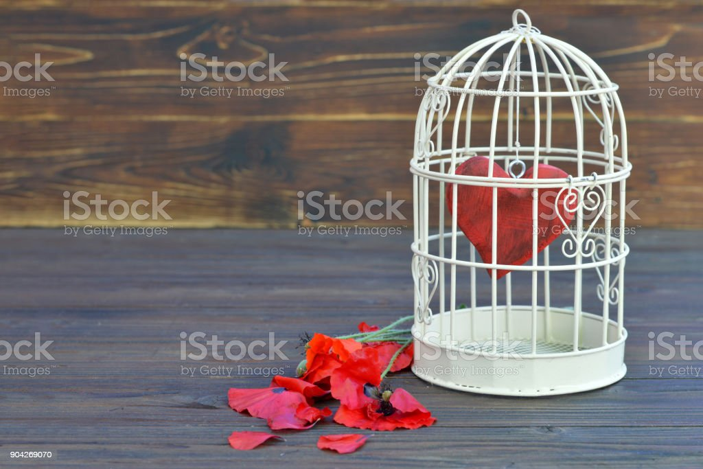 Valentines Day card, Valentines heart inside the bird cage stock photo