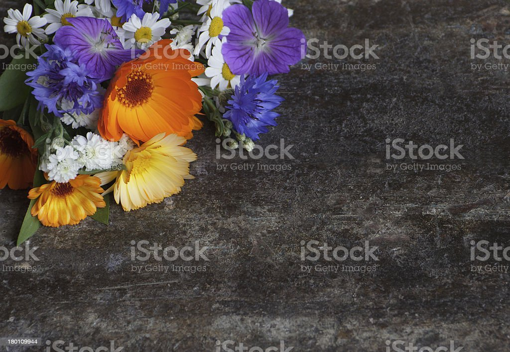 Valentines day card. Wild flowers on the table royalty-free stock photo