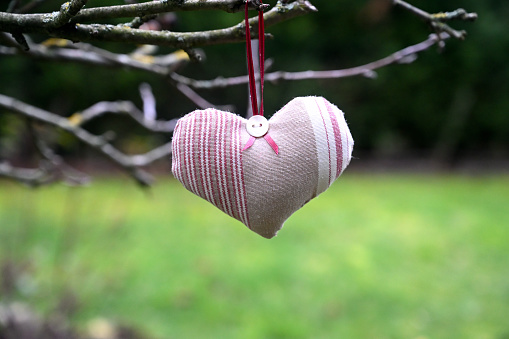 Valentine's day heart in a natural environment
