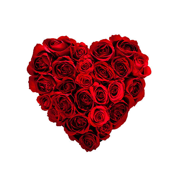 Valentines day rose heart picture id157526486?b=1&k=6&m=157526486&s=612x612&w=0&h=ijg3njy8j5ffajvtk38wpegmymzfiqpppmcdupd30ge=