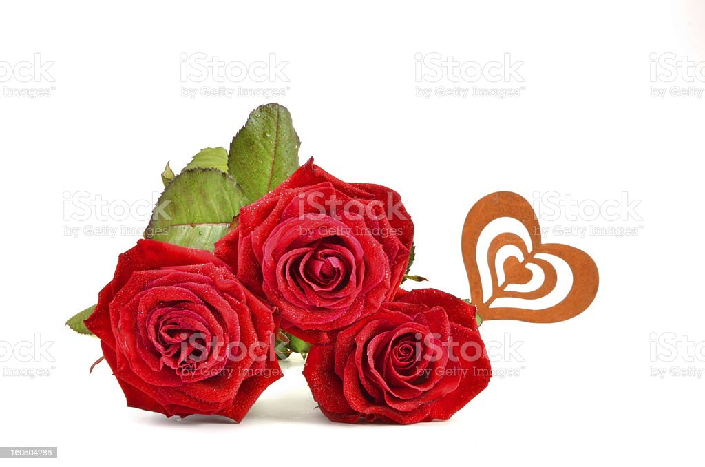 Valentines Day Roses royalty-free stock photo