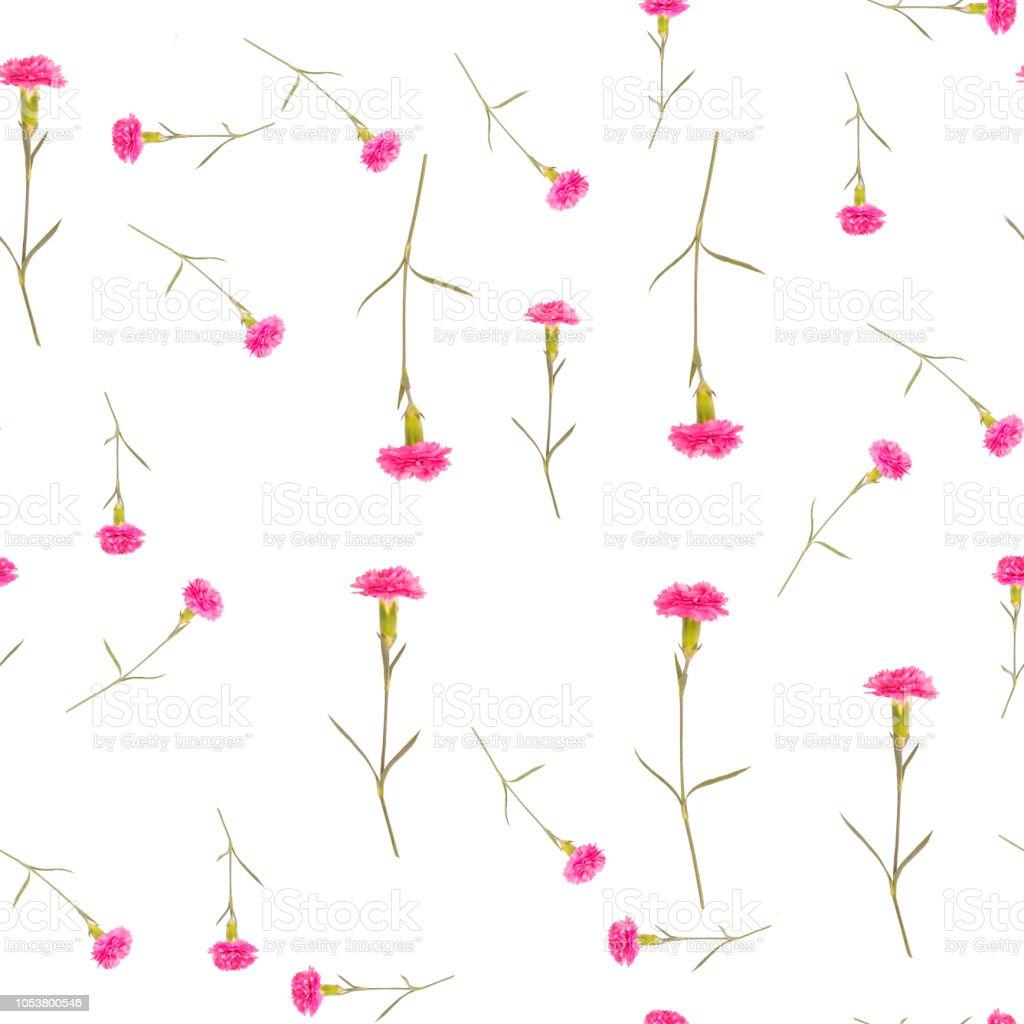Valentines Day Wallpaper Seamless Pattern Of Pink Wildflower