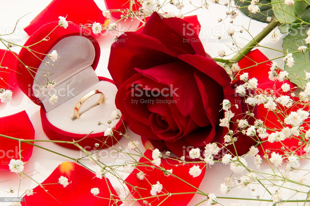 Valentine's day. Wedding ring in gift box and red rose stock photo