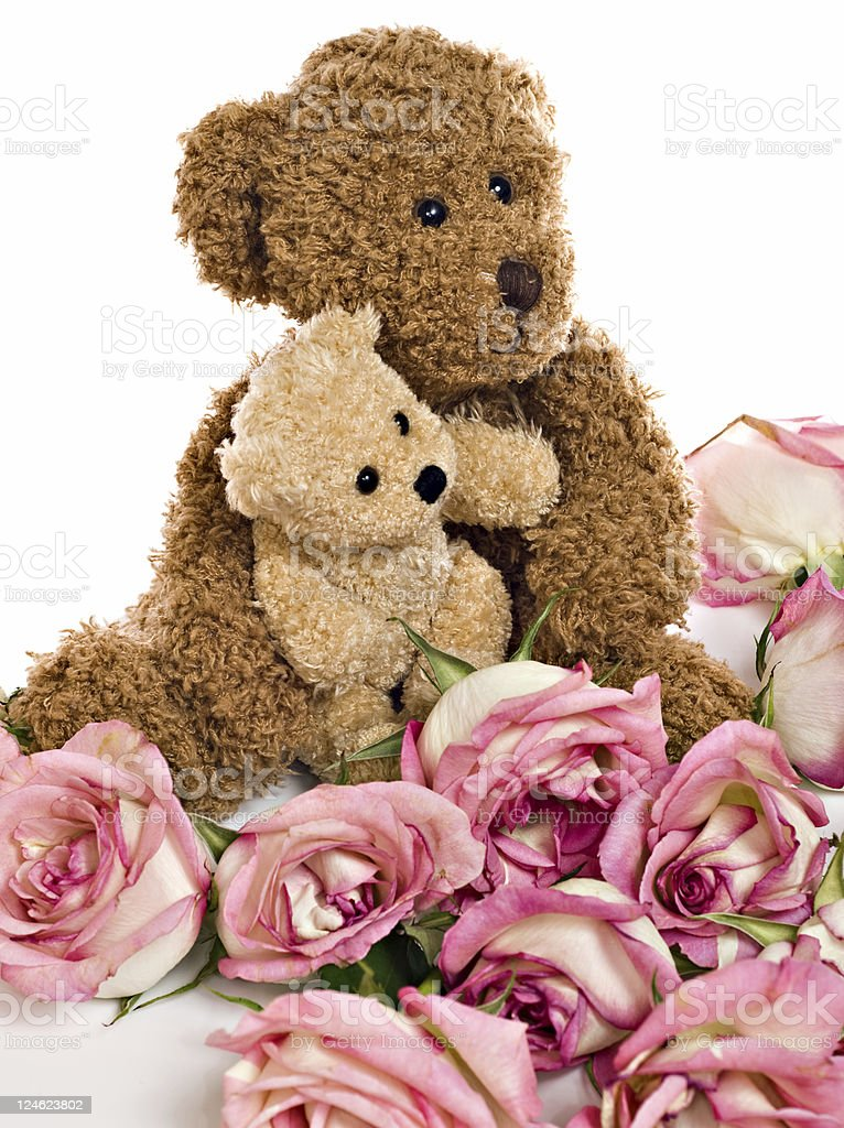 Valentines Teddy Bear Hug royalty-free stock photo
