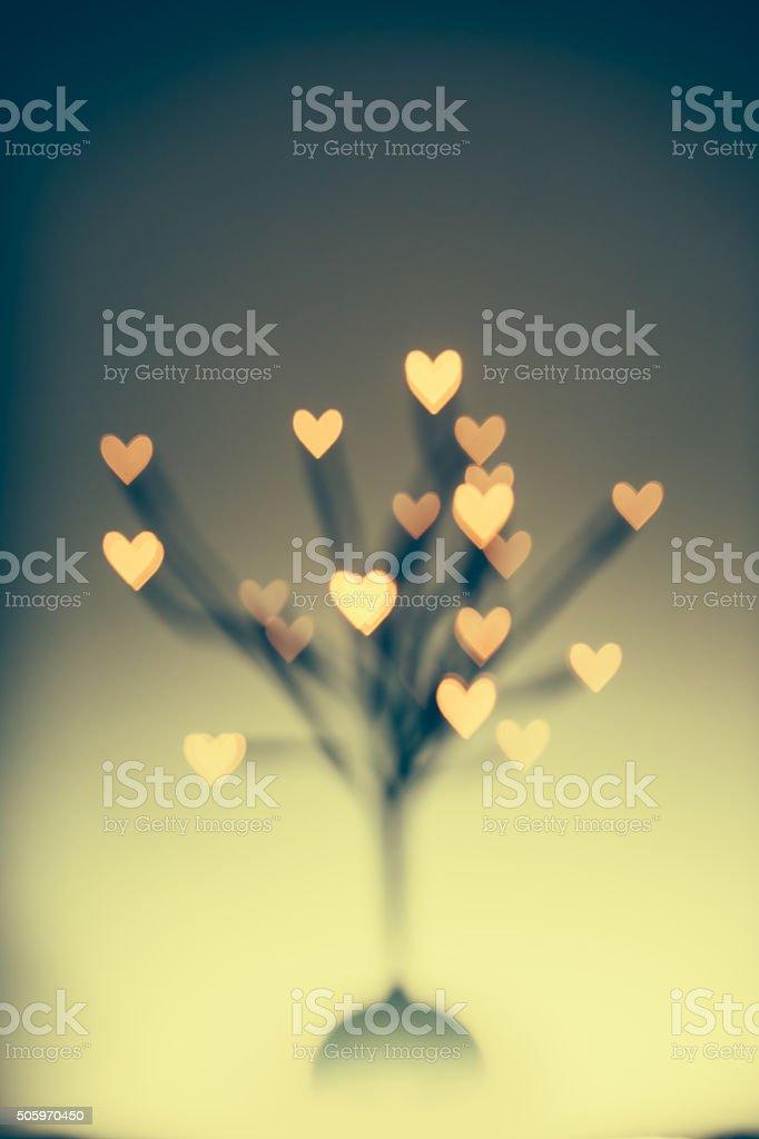 Árvore dos Namorados - foto de acervo