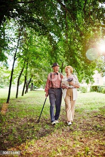 510491454istockphoto Valentines walking in park 506714490