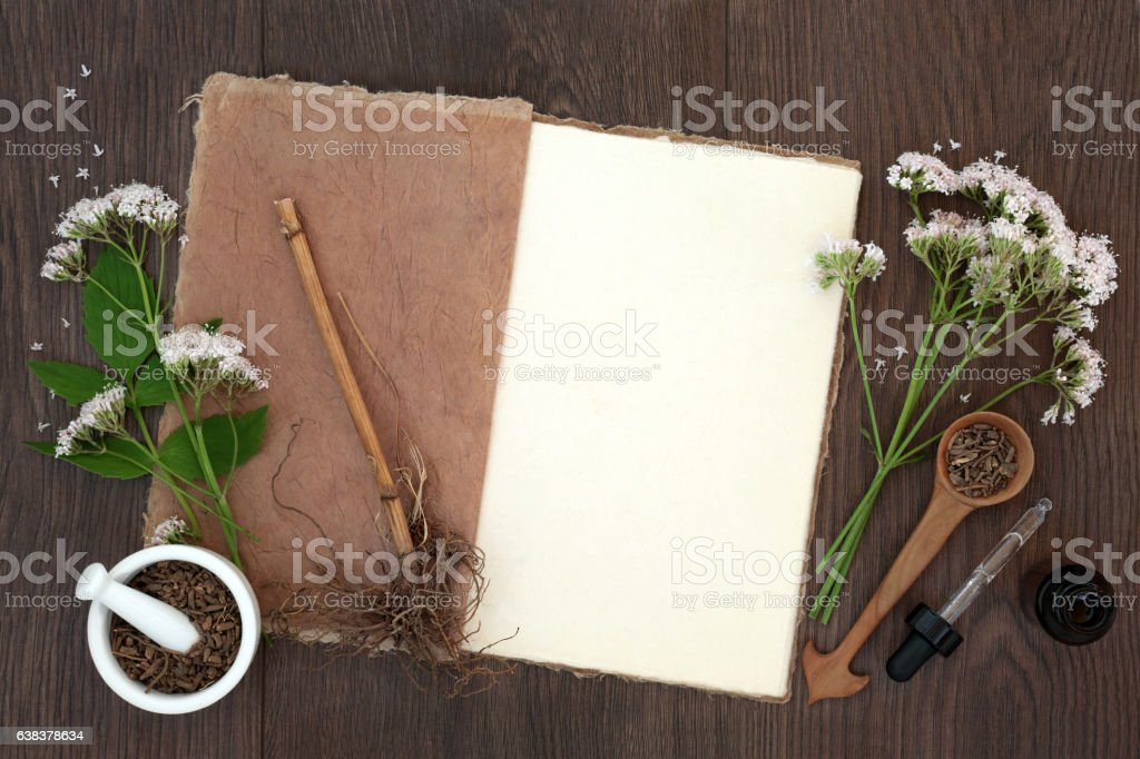 Valerian Herb Flowers and Root stock photo
