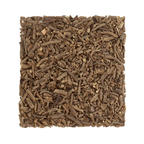 Valerian Herb Root Herbal Medicine stock photo